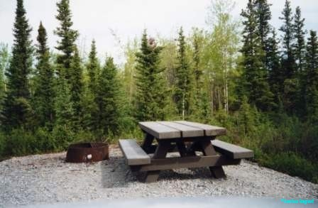 A picnic bench and metal barbecue pit in a forested site