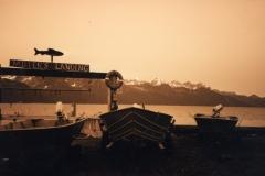 Millers landing boats