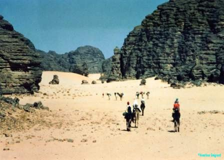 Venturing into the deadly landscape of the sahara