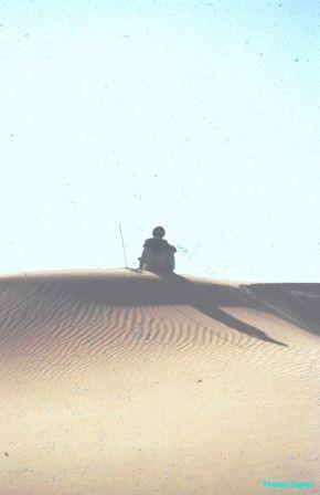 dune lookout2