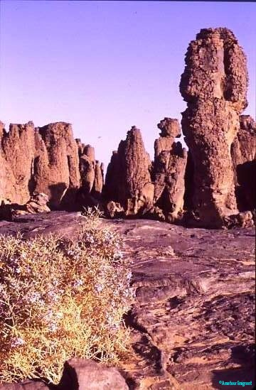 Rock pillars, Tassili