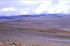 Endless views Bale National Park Ethiopia