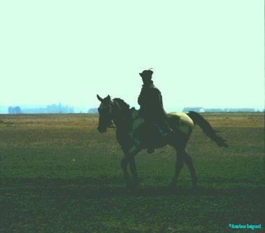 Magyar horseman Hortobagy