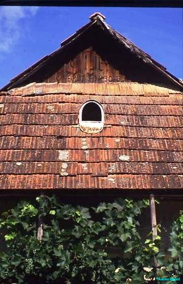 Village house architecture, with inbuilt dovecot, and vine-shaded verandah, Hungary