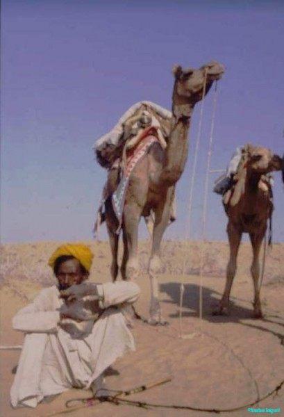 Durga Das and his camels