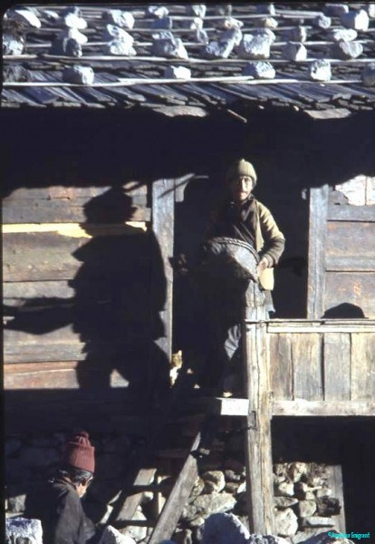 Getting-ready-for-winnowing-work-Langtang-Nepal