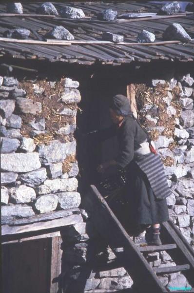Steps-up-to-sleeping-quarters-Langtang-Nepal-1