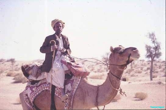Boss camel man, Jaisalmer I now have the embroidered camelskin satchel in my house