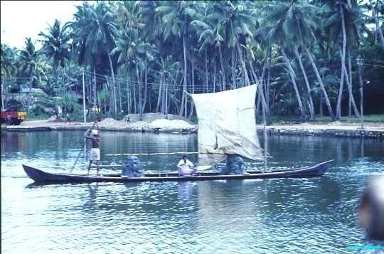 Kerala backwaters canoe