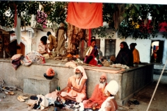 Pushkar-central.-All-manner-of-devotees-gather-at-this-tree-one-man-standing-on-one-leg-for-years-