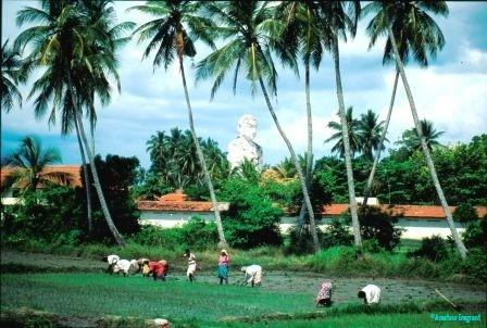 work-and-leisure-anuradhapura