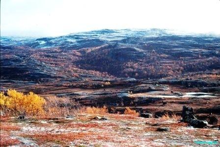 Finnmarksvidda-autumn