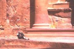 At leisure, Petra