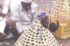 Chicken in a basket ! Yemeni market