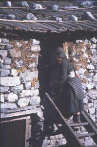 steps-up-to-sleeping-quarters-langtang-nepal