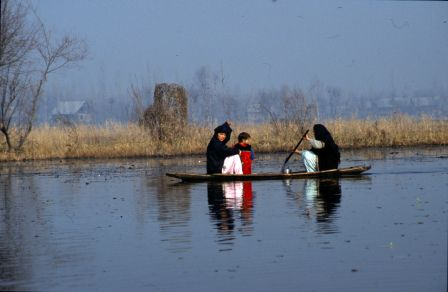 Women paddling along the shore of Dal Lake, Srinagar