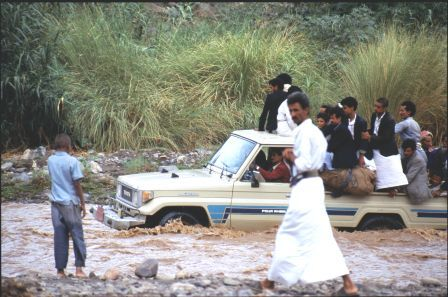 Landcruiser pickup workhorse of Arabia Felix