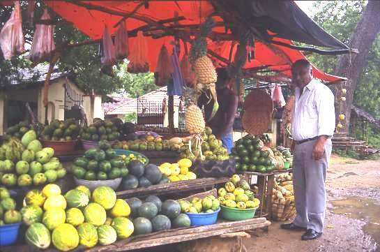Roadside fruit stall Sri Lanka