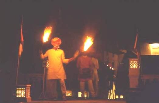 Flamboyant retainer, Mandawa