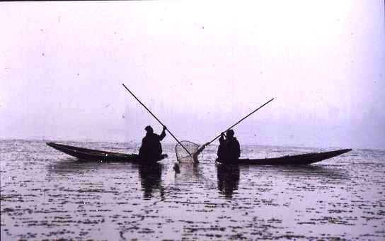 Fishermen, Dal Lake, Kashmir