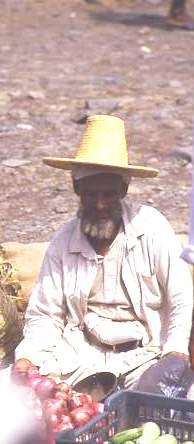 Yemeni vegetable seller