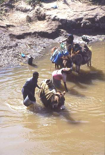 Collecting water, southern Ethiopia